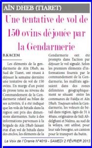 Une tentative de vol de 150 ovins déjouée par la Gendarmerie dans AIN DEHEB vol-3-188x300
