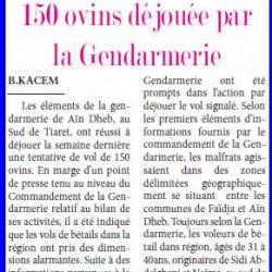 Une tentative de vol de 150 ovins déjouée par la Gendarmerie