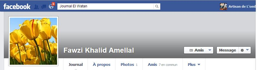 Facebook Fawzi Khalid Amellal  dans Comptes Facebook fawzi-amellal