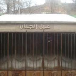 Patrimoine : vers la réhabilitation de la source «Aïn El Djenane»